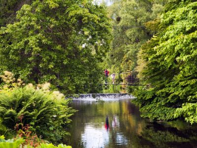 Irish Tourist Attractions: Visit Mount Usher Gardens