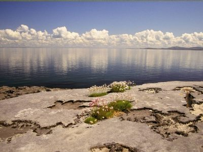 Irish Tourist Attractions: Visit Burren