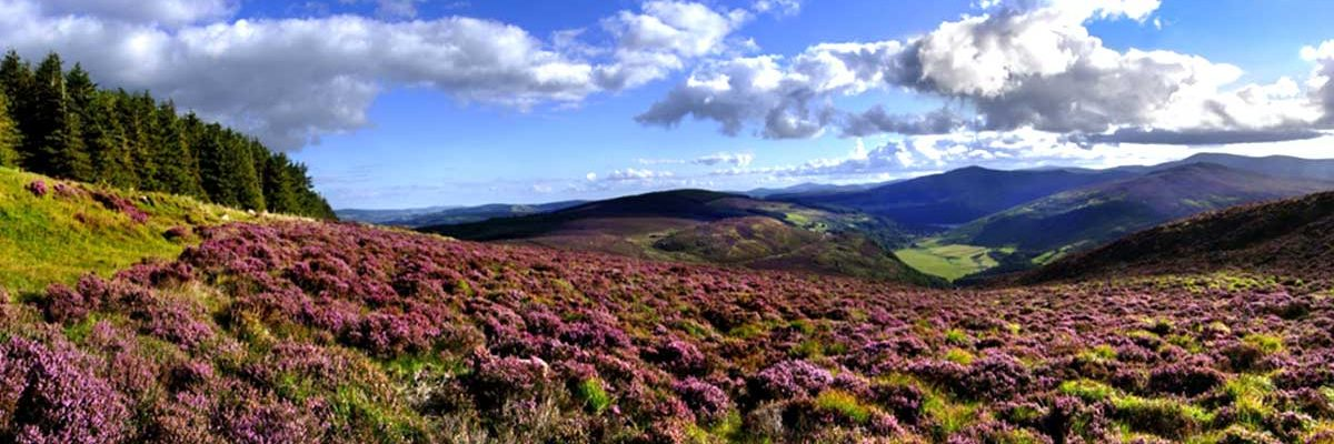 Stunning beauty of the Wicklow Mountains